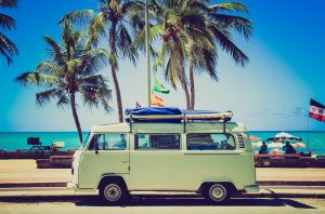 beach with palm trees and a van