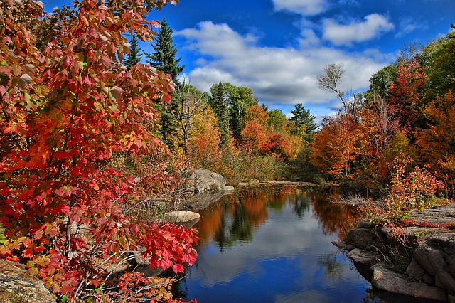 If you want to enjoy the nature, start moving from Hamilton to New Brunswick