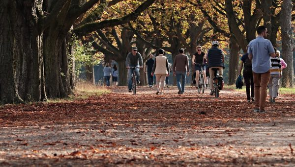 People walking in the street in the Autumn