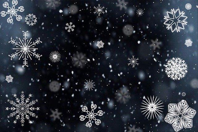 Best Winter Activities for Families in Oakville