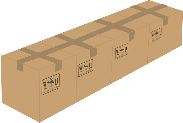 Should you use plastic bins or cardboard moving boxes?