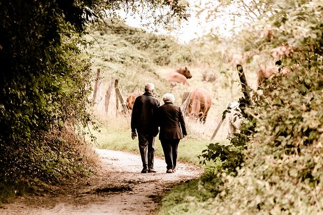 Seniors walking in nature looking for Best places to retire in Ontario