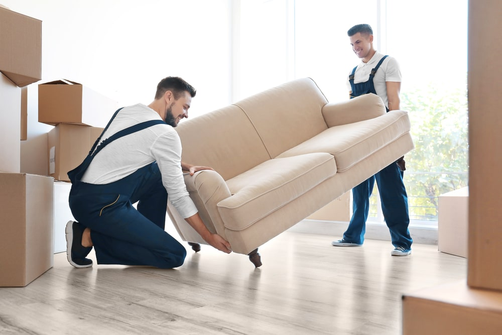 Choose specialist in moving your special things