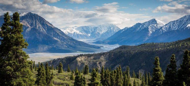 Yukon river panorama