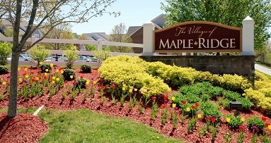 Best movers if you are moving from Maple Ridge