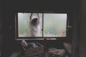 A woman looking through a basement window