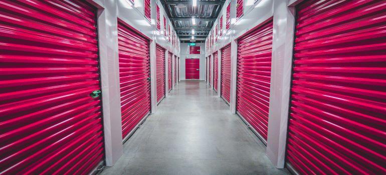 pink storage doors